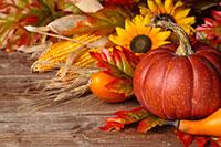 thanksgiving-pumpkin-200