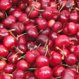 Fresh Cherries at Park Springs Atlanta CCRC