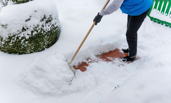 Snow Shove